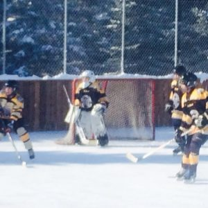 Backyard ice rink liners