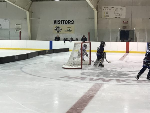 Rink Dividers